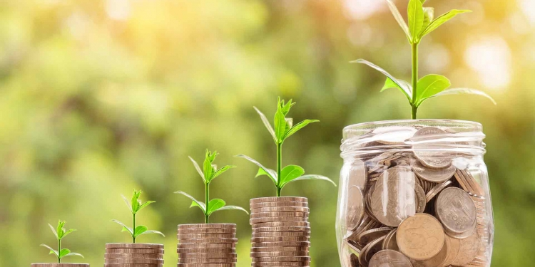 Money Invest Green