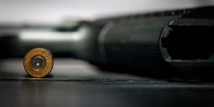 Pistol Weapon Gun Gun Control Weapons Firearms