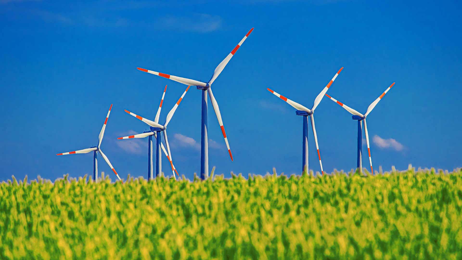 Pinwheel Field Cereals Sky Wind Energy Wind Power