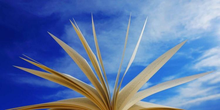 book Education Univercity Universities