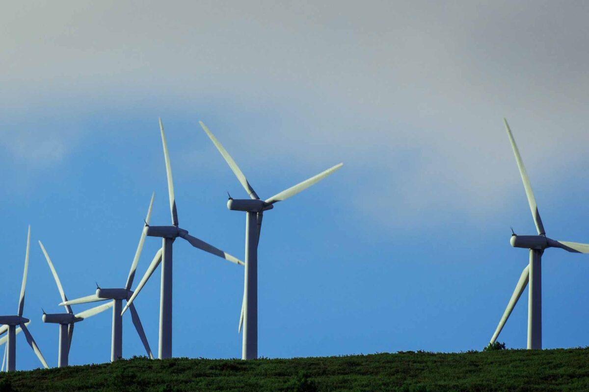 windmill wind farm energy
