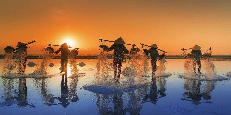 salt-harvesting Asia migrants