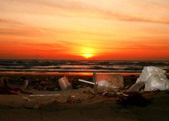 trash sea plastic pollution